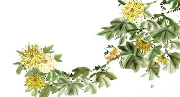 Chinese Chrysanthemum Painting,50cm x 100cm,2340059-x