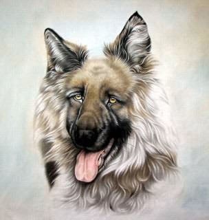Chinese Dog Painting,69cm x 69cm,4460005-x