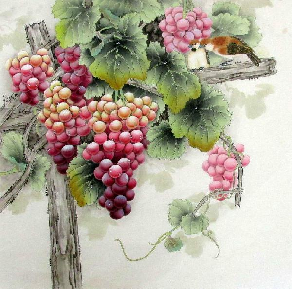 Grape,66cm x 66cm(26〃 x 26〃),2387015-z