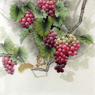 Chinese Grape Painting,66cm x 66cm,2387022-x