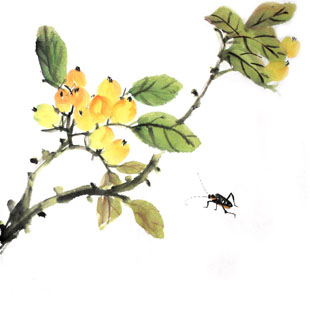Chinese Insects Painting,33cm x 33cm,2421013-x