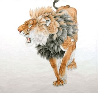 Chinese Lion Painting,97cm x 90cm,4733002-x