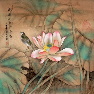 Chinese Lotus Painting,66cm x 66cm,2319003-x