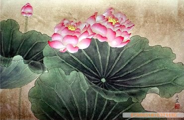 Chinese Lotus Painting,50cm x 33cm,2320004-x