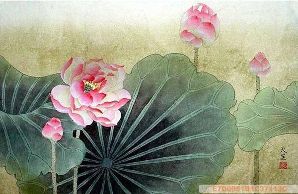 Chinese Lotus Painting Lotus 2320009 50cm X 33cm 19〃 X 13〃