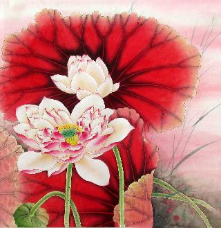 Chinese Lotus Painting,66cm x 66cm,2387005-x
