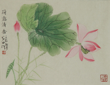 Chinese Lotus Painting,34cm x 46cm,2388013-x
