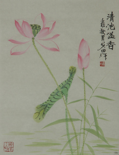 Chinese Lotus Painting,34cm x 46cm,2388019-x