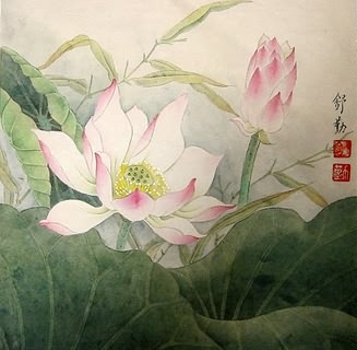 Chinese Lotus Painting,33cm x 33cm,2405006-x
