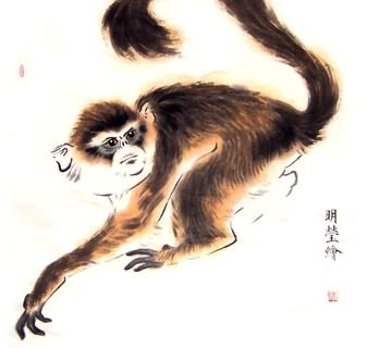 Chinese Monkey Painting,50cm x 50cm,4374017-x