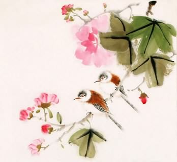 Chinese Other Birds Painting,40cm x 40cm,2340088-x