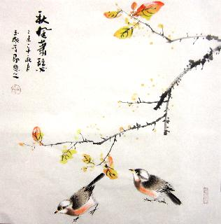 Chinese Other Birds Painting,50cm x 50cm,dyc21099028-x