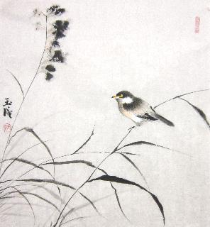 Chinese Other Birds Painting,50cm x 50cm,dyc21099031-x
