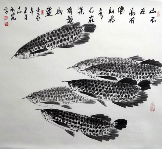 Other Fishes,69cm x 69cm(27〃 x 27〃),2360008-z