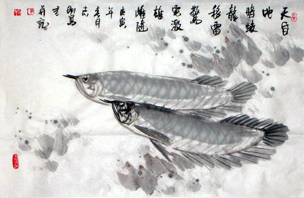 Other Fishes,69cm x 46cm(27〃 x 18〃),2360011-z