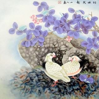 Chinese Pigeon Painting,69cm x 69cm,2510002-x