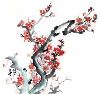 Chinese Plum Blossom Painting,33cm x 33cm,2485025-x