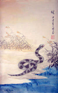 Chinese Snake Painting,43cm x 65cm,4349001-x