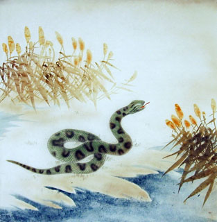 Chinese Snake Painting,66cm x 66cm,4349007-x