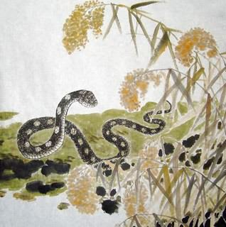Chinese Snake Painting,50cm x 50cm,4449034-x