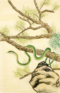 Chinese Snake Painting,69cm x 46cm,4617004-x