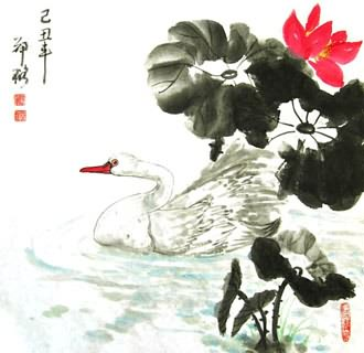 Chinese Swan Painting,50cm x 50cm,2517003-x