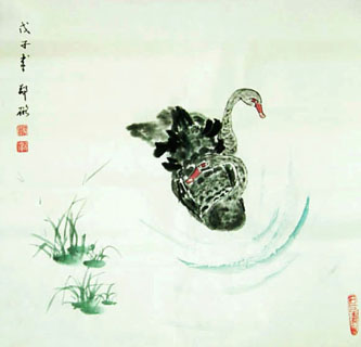Chinese Swan Painting,50cm x 50cm,2517005-x